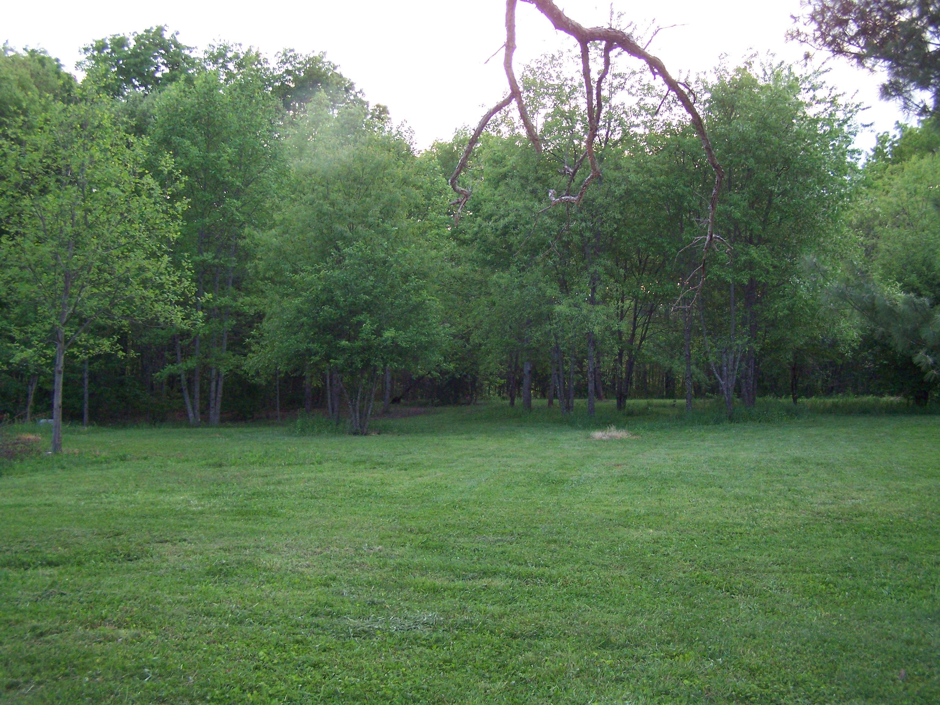 Garden Design Ideas For Acreage : Ideas for landscaping acreage frugal gardening momma